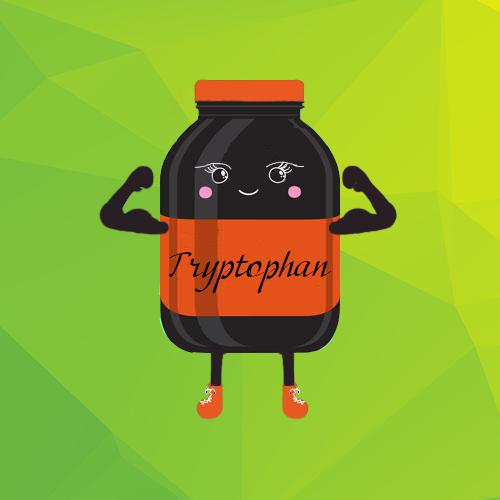 L — Tryptophan